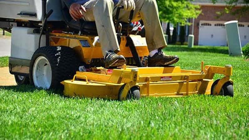 Lawn Care Maintenance For Mere Mortals