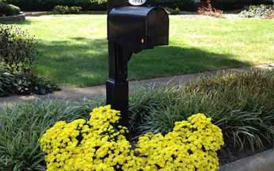 A Quick Guide to Home Mailboxes