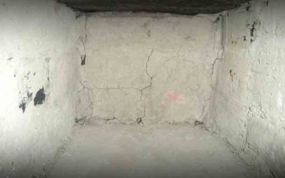 Basement Mold – The Most Common Place In The Home